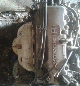 Двигатель хонда лого 99 г.