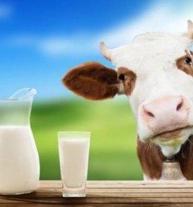 Продаётся молоко коровье и козье