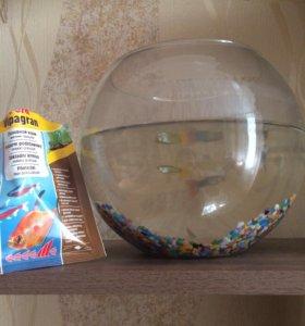 Рыбки+ аквариум с грунтом+ корм