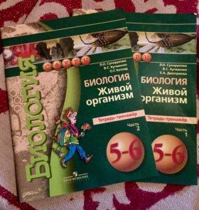 Рабочая тетрадь по биологии/ 5-6 класс