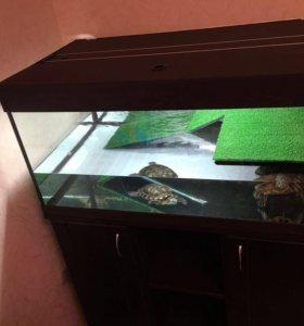 Аквариум для красноухой черепахи 180 литров новый
