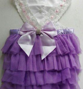 Одежда для собак. Платье.