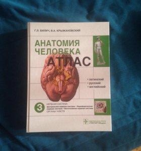 Атлас Анатомии Человека Том 3.