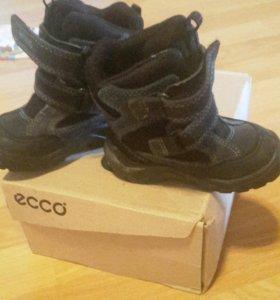 Ботиночки Сапожки экко