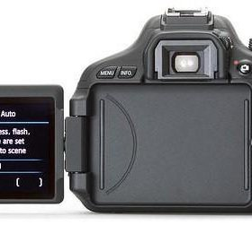 Canon d 600 kit