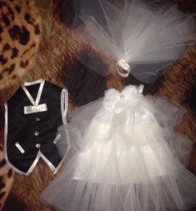 Свадебный аксессуар, наряд на шампанское + 👠