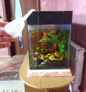 Продам аквариум!