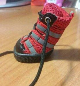 Ботиночки для чихуахуа
