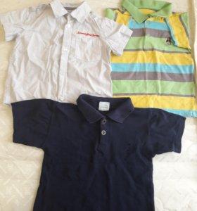 Поло, футболки, шорты