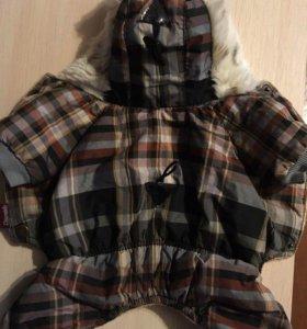 Новая крутая куртка :)