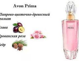 PRIMA, 50ml