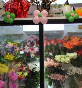 Холодильник для цветов и продуктов