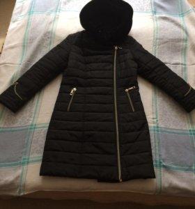 Куртки, пальто, костюмы