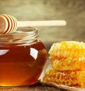 Мёд из Тверской области