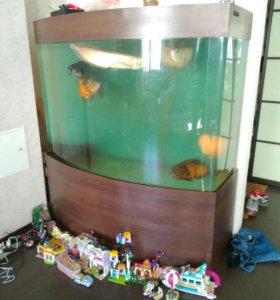 Акриловый аквариум 700л