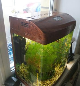 Аквариум 40 литров с рыбками