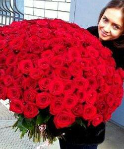 101 роза Голландия