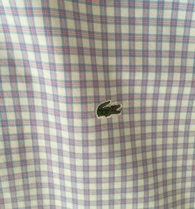 Рубашка мужская Lacoste новая оригинал размер 45