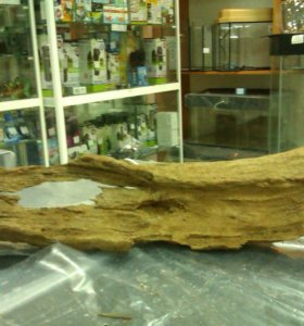 Коряга мангровая малая 15-30см