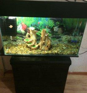 Аквариум 100 литров с рыбками и тумбой