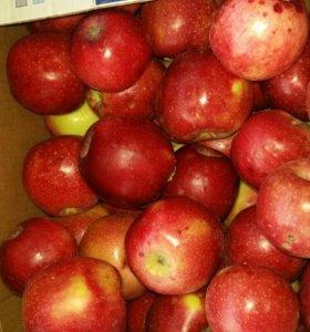 яблоки красный Астрахань, в не ограниченном кол