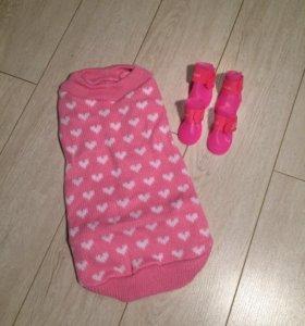 L Одежда для собак (свитер)