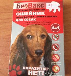 Антипаразитарный ошейник для собак