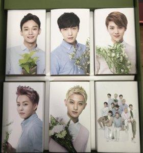 Карточки участников популярной группы EXO