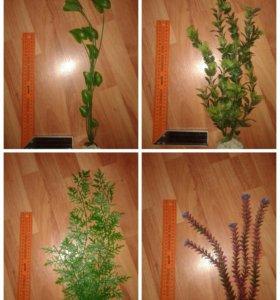 Искуственные растения для аквариума