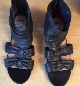 Туфли Chester нат . кожа