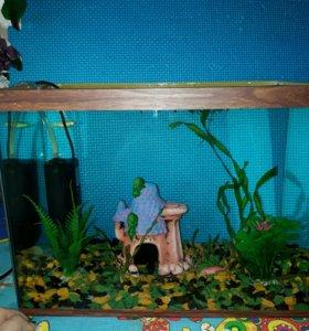 Аквариум со всем сожержимым+рыбки
