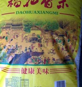Рис сорт Фушигон