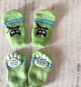 Носочки для кошечки