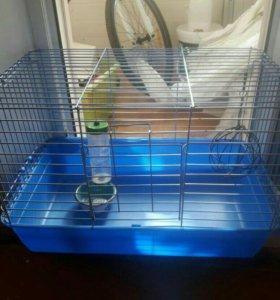Клетка для грызунов с поилкой миской и шариком д/с