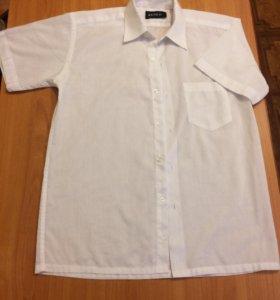 Рубашки (4 вида)