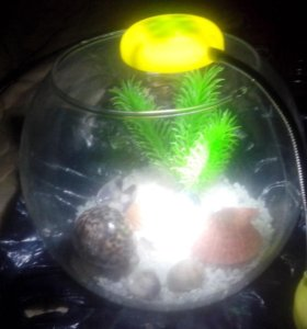 Аквариум круглый с подсветкой