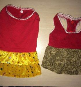 Платья для маленьких собачек