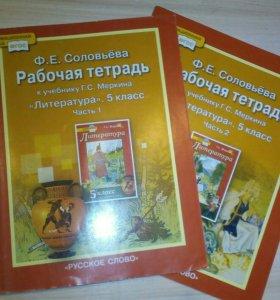 Рабочие тетради по литературе 5 кл. Ф. Е.Соловьева