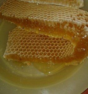 Мед пчелинный (Разноцветье) натуральный