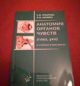Анатомия органов чувств