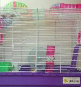 Клетка для грызунов или маленькой птички