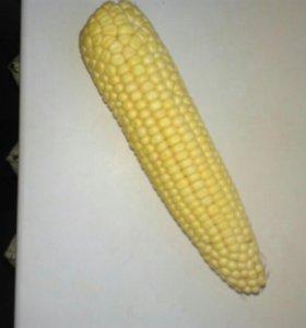 Кукуруза не вареная