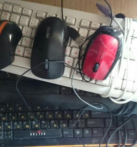 Клавиатуры и мыши