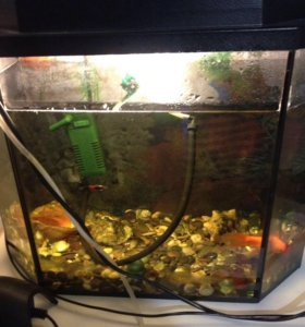 Срочно продаём аквариум. Все в комплекте