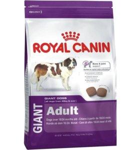 Сухой корм Royal Canin Adult Giant для собак (4кг)