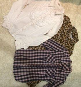 Рубашки (3шт)