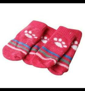 Носочки для маленькой собачки.