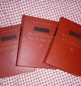 Атлас анатомии человека, Р.Д.Синельников