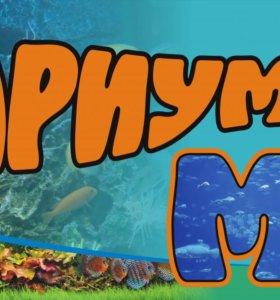 Аквариумный рыбки и все для них