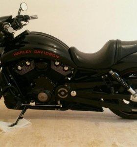 Harley Davidson nicht rod special vrscdx